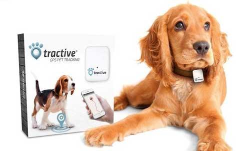 Tractive Pet  Takip Cihazı Türkçe kullanım klavuzu
